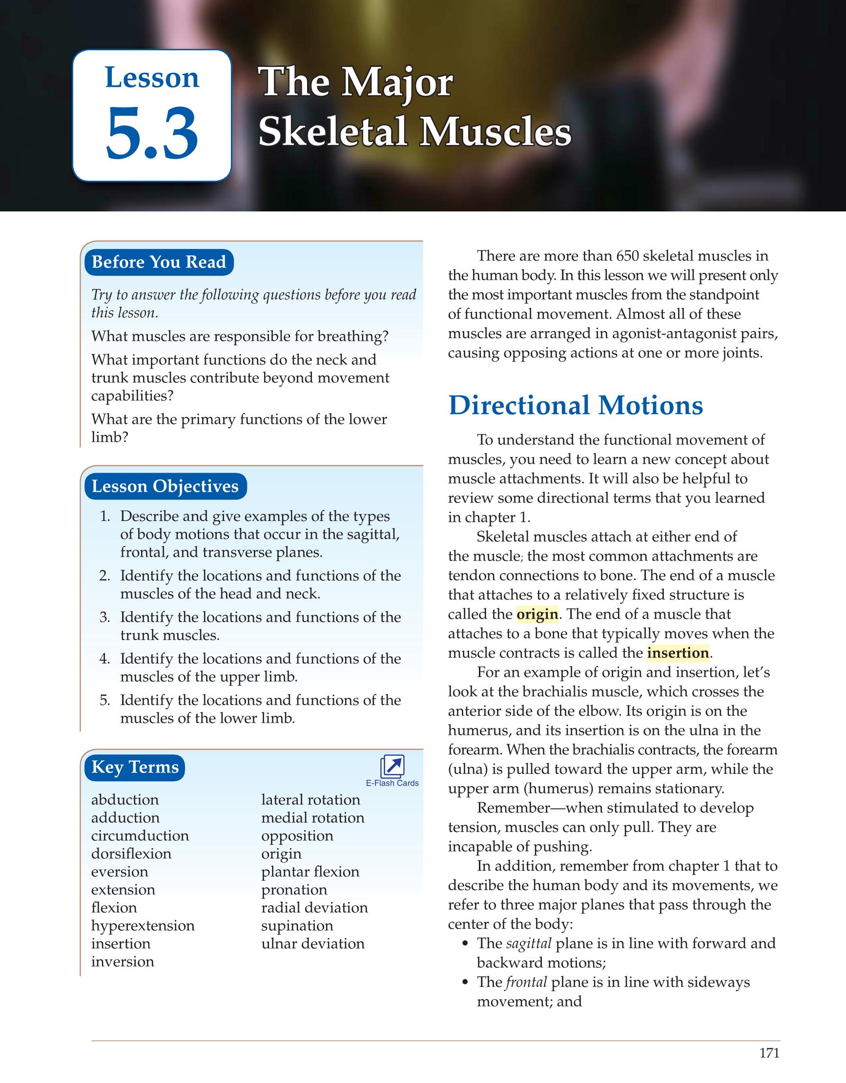 ebook schöne sätze der mathematik ein überblick mit kurzen